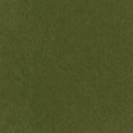 Verde Muschio Scuro