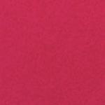 Fucsia Neon