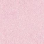 Glitter fine Rosa Baby