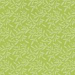 moosgummi verde pastello ulivo